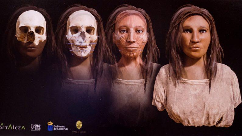 Vista de la reconstrucción del rostro de una aborigen canaria del siglo VI que se ha conseguido realizar a partir de los restos óseos que conserva el Museo Canario, el hasta ahora anónimo cráneo número 977. EFE/ Ángel Medina G.