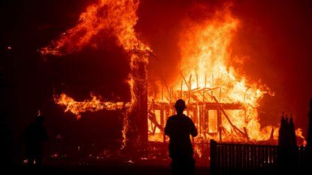 Hallan perro que sobrevivió al incendio de California un mes después esperando en su casa quemada