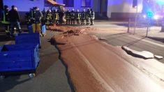 Un río de chocolate inundó una calle tras un accidente en una fábrica en Alemania