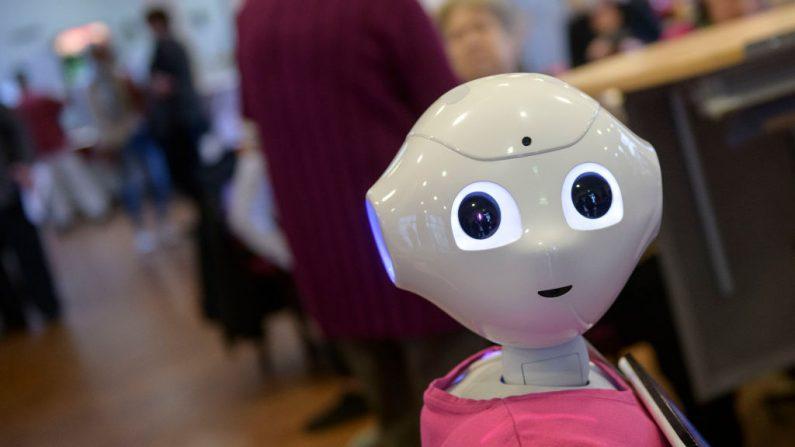 """Imagen de archivo. Un robot llamado """"Peppa"""" fotografiado durante una presentación de dos robots en el centro de atención a personas mayores August-Stunz-Altenzentrum el 28 de noviembre de 2018 en Frankfurt, Alemania (Thomas Lohnes/ Getty Images)"""