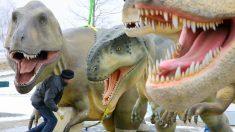 El dinosaurio depredador grande más antiguo proviene de los Alpes italianos