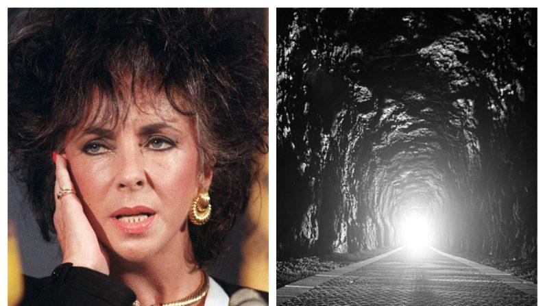 Derecha (Elizabeth Taylor - Jerome DELAY/AFP/Getty Images) Izquierda (Imagen Ilustrativa - Pixabay)