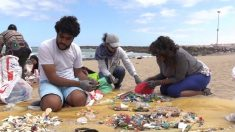 Microplástico: pequeños fragmentos para un gran problema