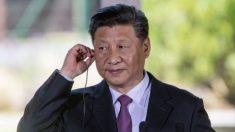 Después de la reunión con Trump, Xi Jinping promete acabar con el fentanilo de fabricación china