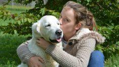 Salva a un perro herido y lo carga sobre sus hombros. Cuando halla a sus dueño recibe un gran regalo