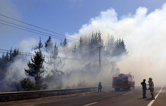"""Las autoridades chilenas informaron hoy que existen al menos 71 focos de incendios activos entre la región central de Valparaíso y la sureña región de La Araucanía para muchos de los cuales ha declarado """"alerta roja"""". EFE/Raúl Zamora"""