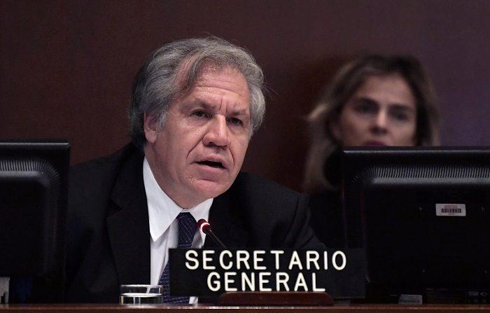 """La OEA acuerda """"no reconocer la legitimidad"""" del Gobierno de Nicolás Maduro"""