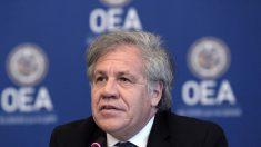 OEA pide a régimen de Nicaragua anular ley que prohibiría a la oposición participar en elecciones