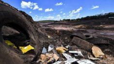 Ruptura de represa minera en Brasil destruye al menos 125 hectáreas de bosque
