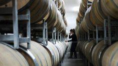 Experta culpa a los productos falsos chinos de causar una pérdida de 3,1 billones de dólares para la industria mundial del vino