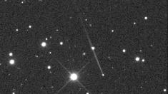 Asteroide Gault sorprende, no es cometa y le aparece cola de 400.000 km