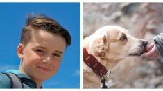 Conoce a este niño de 7 años que ya rescató más de mil perros y les encontró un nuevo hogar