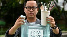 Crean bolsas biodegradables hechas de mandioca que no contaminan y se pueden comer