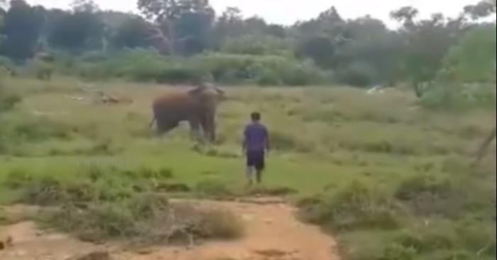 Captura de pantalla de Youtube Newsfirst Sri Lanka