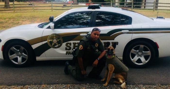 Despiden a policía que disparó sin motivo a un perro chihuahua destrozándole la mandíbula