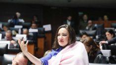 Polémica crítica de un diputado a una senadora mexicana que comparecía en la tribuna con su bebé en brazos