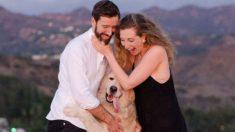 Un novio enamorado hace una mágica propuesta de boda con 16 perros como en un