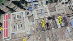 Mapeando el horror de los derechos humanos: un cálculo las detenciones en Xinjiang