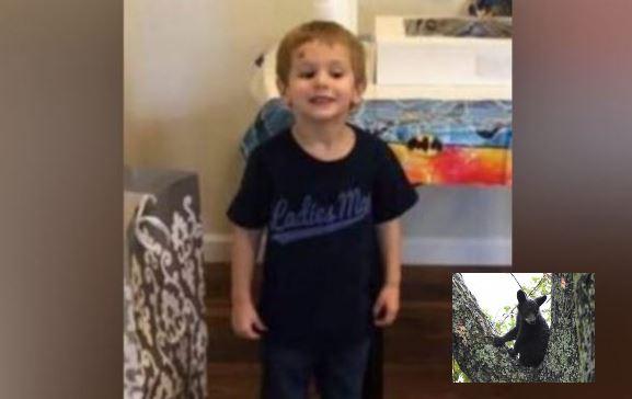 Casey Hathaway, de 3 años, desapareció de la casa de su abuela en Ernul, Carolina del Norte el 22 de enero de 2019. Fue encontrado el 24 de enero de 2019. (Oficina del Sheriff del Condado de Craven) - Osonegro joven (Wikimedia)