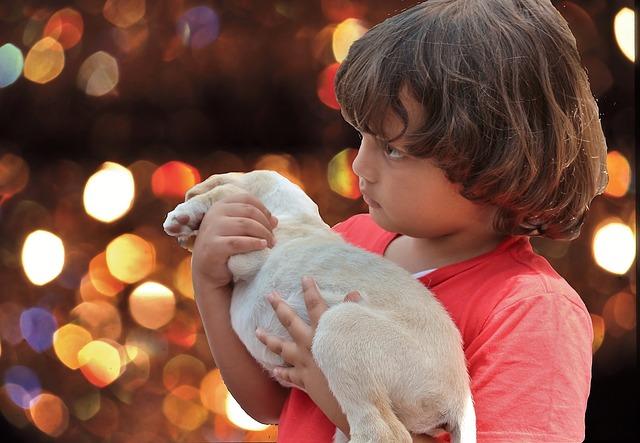 El tierno vínculo de un niño sin hogar y su cachorro te tocará el corazón, su foto emociona a la web