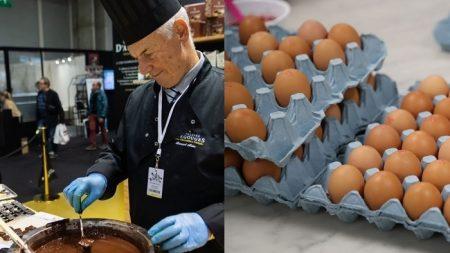 No hay enfermedad cardiovascular por comer huevo o chocolate cada día, según investigación