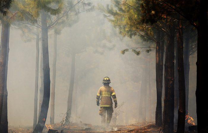Dos personas muertas, cerca de 40 viviendas destruidas y 3.200 hectáreas arrasadas por el fuego han dejado hasta ahora más de un centenar de incendios forestales desatados en el sur de Chile durante el fin de semana, según informó este lunes las autoridades. EFE/Elvis González