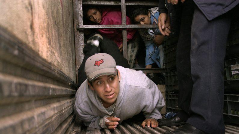 Un total de 239 migrantes centroamericanos y suramericanos fueron rescatados en el estado mexicano de Veracruz, donde eran transportados en condiciones infrahumanas, informaron autoridades locales. (EFE)