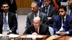 Consejo de Seguridad de la ONU dividido sobre cómo terminar con la dictadura en Venezuela