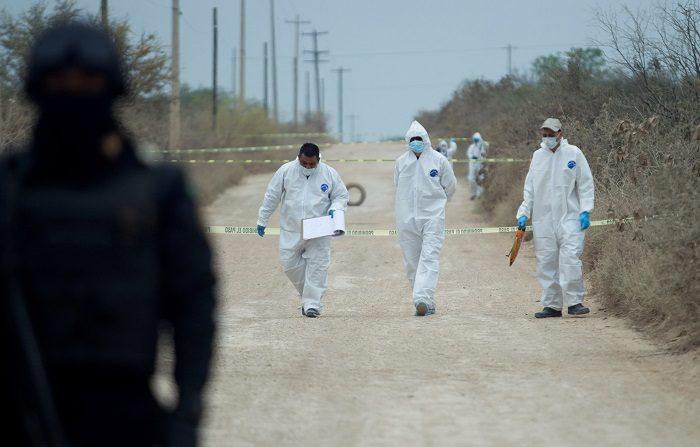 Peritos forenses trabajan este martes, en la zona donde fueron hallados cuatro cadáveres en el municipio de Pesquería, en el estado de Nuevo León (México). EFE/STR