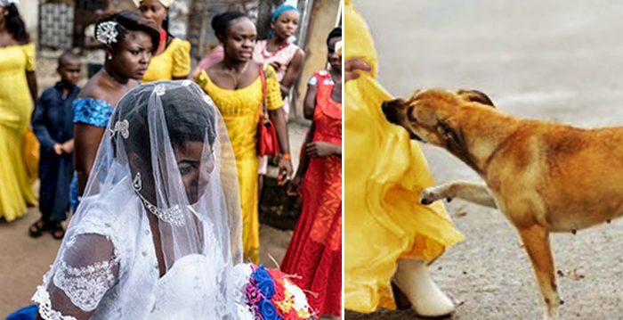 Foto combinada representativa. Getty Images/Shutterstock