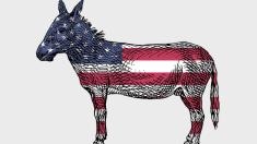 Los demócratas permiten que los comunistas se infiltren en su partido por todo EE. UU.