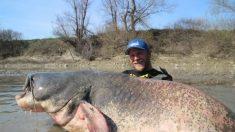 Pescador atrapa un bagre masivo de 130 kilos y establece un nuevo récord