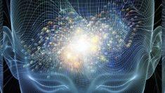 Científicos de la Universidad de Yale están desconcertados por los beneficios de la meditación