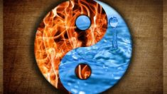 Descubre los eternos principios del yin y yang de la medicina china para curar enfermedades