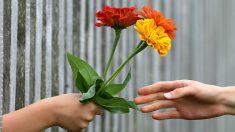 Hermanos reparten más de 550 flores a solteras, viudas y a esposas de militares en San Valentín