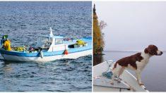 Pescador ve a su amado perro irse por la borda, cuando le regresan su bote, rompe en llanto