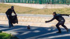 Policía se lleva detenido un gallo que con su canto no dejaba dormir a los vecinos