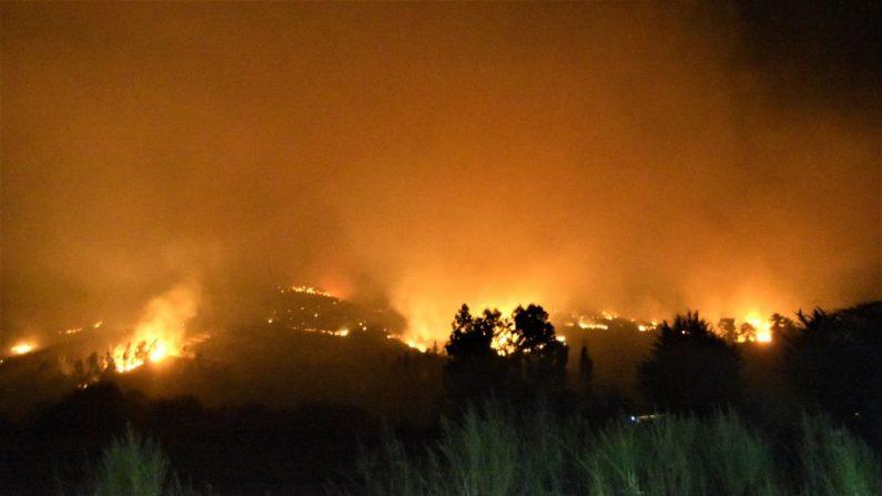 Un incendio forestal quema las colinas alrededor de Carahue en la Región de la Araucanía, en el centro de Chile, al sur de Santiago, el 6 de febrero de 2019. - Las autoridades han declarado una alerta roja en la región de la Araucanía, ya que los incendios forestales mataron a dos personas, hirieron a otras dos y quemaron más de mil hectáreas hasta ahora. (Foto por STR / AFP) (El crédito de la foto debe leer STR/AFP/Getty Images)
