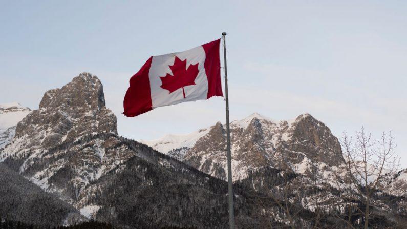Cinco diplomáticos canadienses y sus familias que estaban destinados en Cuba y resultaron afectados por una misteriosa dolencia han presentado una demanda contra el Gobierno canadiense, informó hoy la radiotelevisión pública de Canadá. (DON EMMERT/AFP/Getty Images)