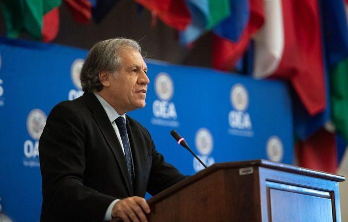 """Secretario de la OEA: """"Nadie está planificando ninguna invasión"""" en Venezuela. (SAUL LOEB / AFP/Getty Images)"""