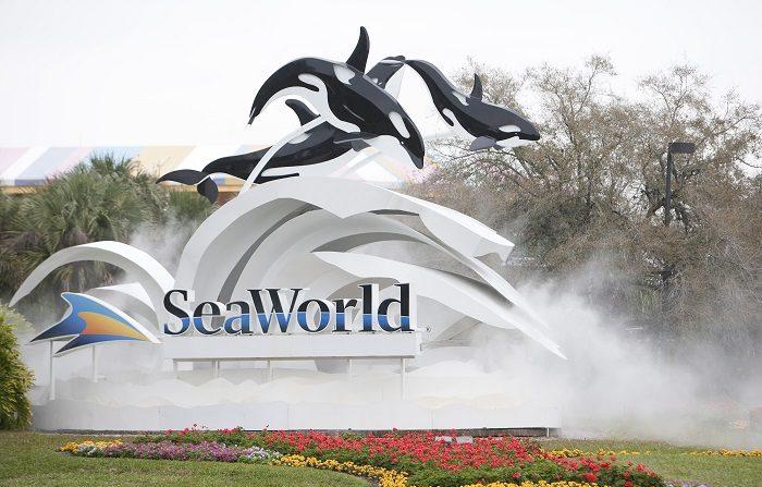 Declaran parque acuático de Orlando como Centro Certificado de Autismo (PIERRE-PHILIPPE MARCOU/AFP/Getty Images)