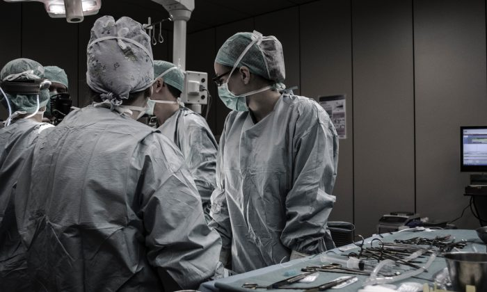 No siempre está claro de dónde provienen los órganos humanos en los trabajos de investigación. (Piron Guillaume)