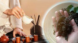 Té tradicional chino: Un increíble antídoto que combate los venenos en el cuerpo