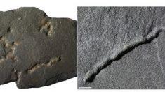 Hallan las huellas más antiguas del planeta, de 2.100 millones de años