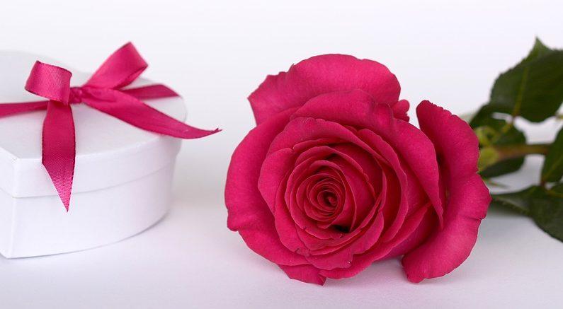 Algunos enamorados regalan flores, chocolates, una cena romántica... (Crédito: Pixabay/annca)