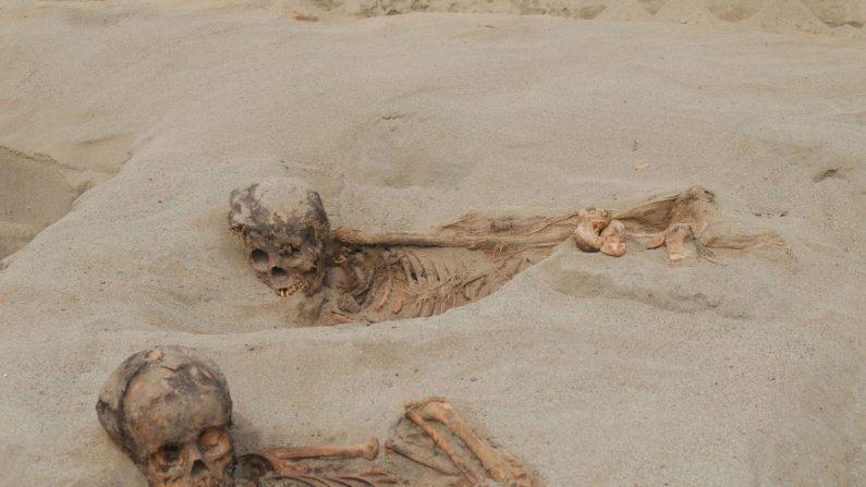 Fotografía cedida por John Verano de la Universidad de Tulane donde aparecen dos niños momificados encontrados junto a casi 140 esqueletos humanos y más de 200 de llamas (aunque podrían ser también alpacas) que corresponderían a un evento ritual celebrado en el sitio de Huanchaquito-Las Llamas, parte del estado de Chimú, una cultura dominante en la costa peruana en el siglo XV. EFE/John Verano/Tulane University