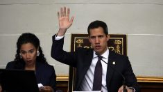 Asamblea Nacional reitera llamado a las Fuerzas Armadas a desobedecer al dictador Maduro