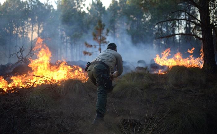 Al menos 2.000 habitantes de cinco comunidades fueron desalojadas por militares ante la amenaza de un incendio que arrasa con cientos de hectáreas de bosque en el estado mexicano de Veracruz, dijeron este lunes fuentes oficiales. EFE/Alberto Roa
