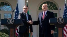 Trump y Bolsonaro se manifestaron
