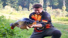 """Pesca un pez dorado gigante de 9 kilos con un pedacito de bizcocho: """"¡Fue una locura!"""""""
